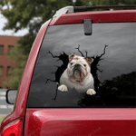 English Bulldog Crack Car Sticker 12