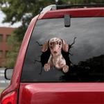 Dachshund Crack Car Sticker 20