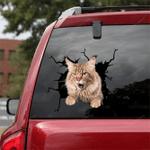 Maine Coon Cat Crack Car Sticker 06