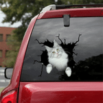 Maine Coon Cat Crack Car Sticker 12