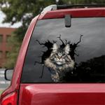 Maine Coon Cat Crack Car Sticker 13