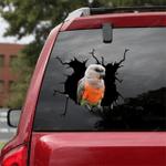 Parrot Crack Car Sticker 06