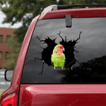 Parrot Crack Car Sticker 14