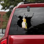 Parrot Crack Car Sticker 15
