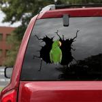Parrot Crack Car Sticker 17