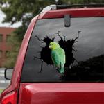 Parrot Crack Car Sticker 18