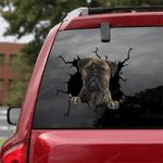 Bullmastiff Crack Car Sticker 05