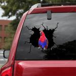 Parrot Crack Car Sticker 21