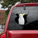 Parrot Crack Car Sticker 25