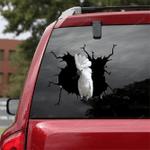 Parrot Crack Car Sticker 26