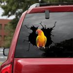 Parrot Crack Car Sticker 27