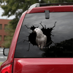 Parrot Crack Car Sticker 30