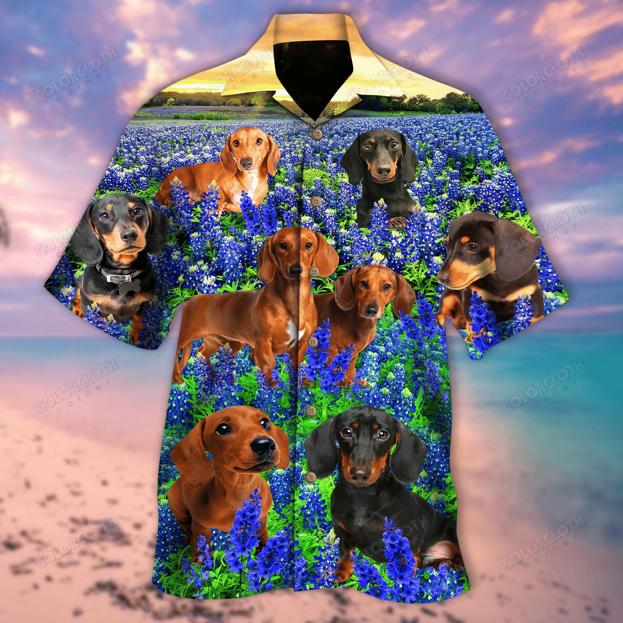 Daschshund In Bluebonnet Field Hawaii Shirt HT280510-RE