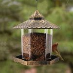 Sparrow Feeder