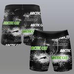 Arctic Cat 3DG0201