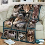 Cute Sloth Images Collage Sherpa Fleece Blanket Perfect Gifts For Sloth Lovers Great Customized Blanket For Birthday Christmas Thanksgiving