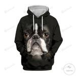 Boston Terrier 3D All Over Print Hoodie, Zip-up Hoodie