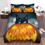 Halloween Black Cat & Jack O Lantern Poly Artwork Bed Sheets Spread Duvet Cover Bedding Sets