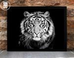 Tiger Print Tiger Black White Photograph Animal Print Fin poster canvas
