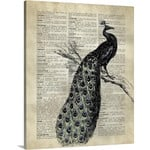 Peacock Print Animal Wild With Tree Plant Tail Beautiful Creature Gorgoeus Home Decor Dictionary Vintage Wall Art