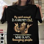 My spirit animal is a grumpy owl who slaps annoying people t-shirt Tshirt Hoodie Sweater