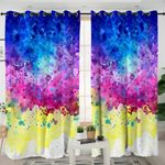 Abstract Paint Curtains