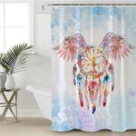 Winged Dream Catcher Sky Shower Curtain