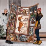 Custom Blanket Dachshund Dog Blanket 5 - Fleece Blanket