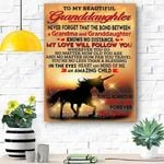 To My Granddaughter Horse Canvas Print Wall Art - Matte Canvas