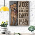Staffordshire Bull Terrier Dog Canvas Prints Wall Art - Matte Canvas