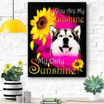 Alaskan Malamute Face My Sunshine Canvas Print Wall Art - Matte Canvas