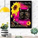 Exotic Shorthair Cat Face My Sunshine Canvas Print Wall Art - Matte Canvas