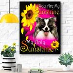 German Spitz Face My Sunshine Canvas Print Wall Art - Matte Canvas