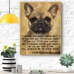 French Bulldog Dog Canvas Prints Wall Art - Matte Canvas #12057