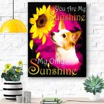 Jack Russell Terrier My Sunshine Canvas Print Wall Art - Matte Canvas