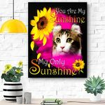 American Curl Cat Face My Sunshine Canvas Print Wall Art - Matte Canvas