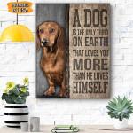 Brown Dachshund Dog Canvas Prints Wall Art - Matte Canvas