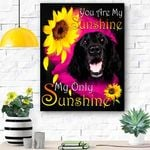 Flat Coated Retriever Face My Sunshine Canvas Print Wall Art - Matte Canvas