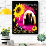 Afghan Hound My Sunshine Canvas Print Wall Art - Matte Canvas