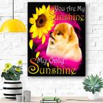 Pomeranian My Sunshine Canvas Print Wall Art - Matte Canvas