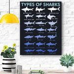 21 Types Of Sharks Marine Biolog Canvas Prints Wall Art - Matte Canvas