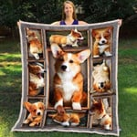 Corgi Awesome Innocent Face Pictures Quilt Blanket Great Customized Blanket For Birthday Christmas Thanksgiving Anniversary