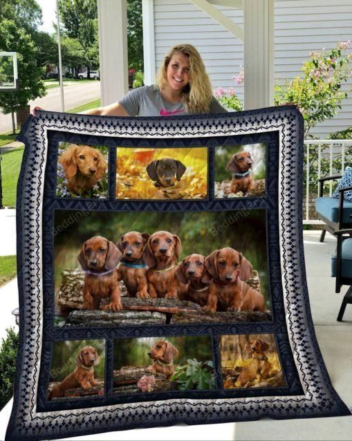 Cute Brown Dachshund Dogs Quilt Blanket Great Customized Blanket Gifts For Birthday Christmas Thanksgiving Anniversary