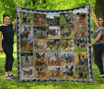 Dogs Play In Grass Dogs Beauty Nature Couple Dogs Blue Heeler Dogs Quilt Blanket Great Customized Blanket Gifts For Birthday Christmas Thanksgiving