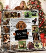 Dachshund Dog Bad Dog Friends Dogs Bruised Eye Dog Holding A Mugshot Board Quilt Blanket Great Customized Blanket Gifts For Birthday Christmas Thanksgiving