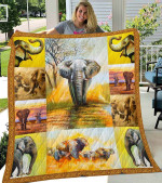 Elephants Toyed With Each Other Quilt Blanket Great Customized Blanket Gifts For Birthday Christmas Thanksgiving