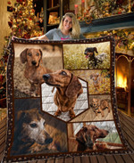 Dachshund Dog Look At You Boss Quilt Blanket Great Customized Blanket Gift For Birthday Christmas Thanksgiving Anniversary