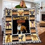 Staffordshire Bull Terrier Anatomy Of A Staffie Quilt Blanket Great Customized Blanket Gifts For Birthday Christmas Thanksgiving