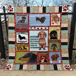Dachshund Dog Drawing Dachshund Are Proof Quilt Blanket Great Customized Blanket Gifts For Birthday Christmas Thanksgiving