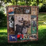 Staffordshire Bull Terrier Bull Friends Dogs Playing with Friends Quilt Blanket Great Customized Blanket Gifts For Birthday Christmas Thanksgiving